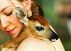 Adorable Self Portrait Photography of Emmy Lee and her Fawn Beautiful Creatures, Animals Beautiful, Majestic Animals, Beautiful Images, Amor Animal, Animal Fun, Self Portrait Photography, Artistic Photography, Oh Deer