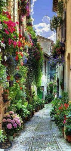 Spello, Liguria, Italy | by Burini Matteo