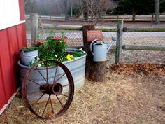 We used a galvanized feed trough planted with some spring flowers, an old wagon wheel, watering can and tree stump to decorate a corner right outside our barn.