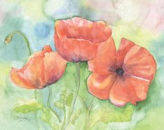 """Poppies watercolor painting Giclee print from my original painting. Landscape/horizontal orientation Reminiscent of my years in California, this is an 10""""w x 8""""h print of my original watercolor painti"""