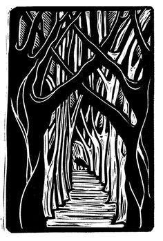 Coyote-fading-print.jpg (444×658)