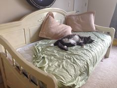 Somedays I don't make the bed Norwegian Forest Cat, Cairn Terrier, Toddler Bed, Household, Happy, Home Decor, Child Bed, Decoration Home, Cairn Terriers