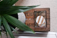 Living room renovation. Plant, rattan basket, vintage wooden crate and glass box.
