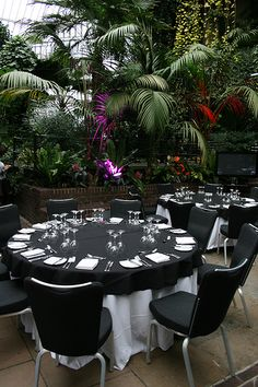 Conservatory at the Barbican from Tropical Venues for Corporate Events