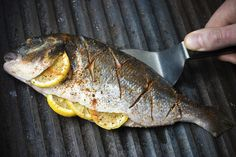Der perfekte Wie grillt man Fisch?-Tipp mit Bild und einfacher Schritt-für-Schritt-Anleitung