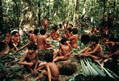 It breathes, though you don't notice it, says Davi Kopenawa Yanomami of his people's home deep in the Brazilian Amazon.    Tribal peoples have lived in balance with their rainforests for millennia. They are the original guardians – they are still the best guardians.