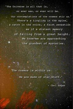 The universe is all that is, or ever was, or ever will be....We are made of stars. Carl Sagan