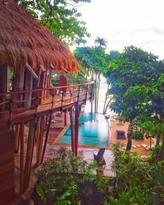 """the view from the balcony at Mamole Treehouse Villa @nihiwatu ✨ Resort Sumba <<<<<<<<<<<<<<<<<<<<<<<<<<< #nihiwatu"""