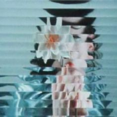 Experiments In Advertising: The Films Of Erwin Blumenfeld