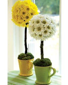daisy topiaries | Daisy Topiary, Elle Decor