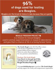 All proceeds from March 1, 2014 - April 30, 2014 will be donated to Beagle Freedom Project