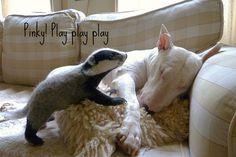 Badger cub and Pinky by helenpriem, via Flickr