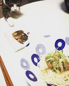 うちの可愛い#泥棒ネコ   ぬかみそだきを狙うやつぬかを使った煮付けだから確かに栄養満点ですけどね 君にはあげられませぬ  #保存料不使用 #無添加 #ぬかみそだき #和食 #ごちそう #料理 #ワーキングママ #おうちごはん #nopreservatives #nochemicals #japanesefood #cooking #homedish #gocciso #cat #fishlover #beautyfood #発酵食品 #fermented #ぬか床 #cat #chat #猫