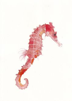 I'd love a watercolour tattoo like this... One seahorse in these colours and one in blue tones... Seahorses <3