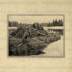 Beaver Dam Graphic Digital Image Download Printable Jpg Png