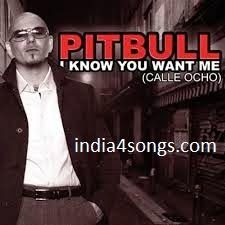Hey baby pitbull mp3 song free download.