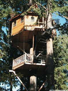 Cool tree houses on pinterest tree houses treehouse and for Southernlivinghouseplans com