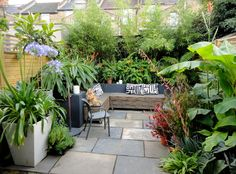 Tops Tips for Gardening in a Small Backyard / Patio | The Lovely Plants
