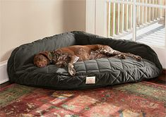 corner dog bed.  Oh my goodness my dogs would love this!  It could replace the make shift bed I made (with pillows and blankets) in the corner of our bedroom!