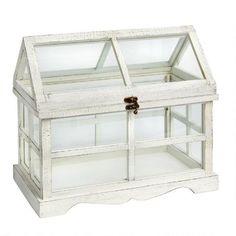 $20 at christmas tree shop card box Horizontal Wood Terrarium