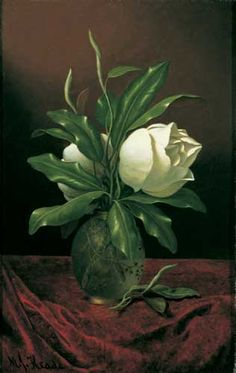 """Two Magnolia Blossoms in a Glass Vase"" by Martin Johnson Heade"