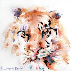 lovely water colour tiger