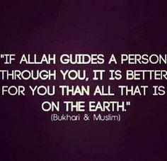 Allah guide us