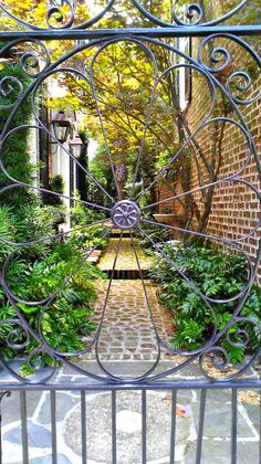 Gardens of Charleston | The Ace Of Space Blog