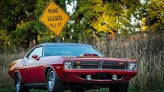 American Muscle Power : Photo