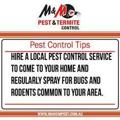 Termite Control Termite, Inspections Pest Control, Inspections, Ventilation,  General Pest Control, Termite Eradication