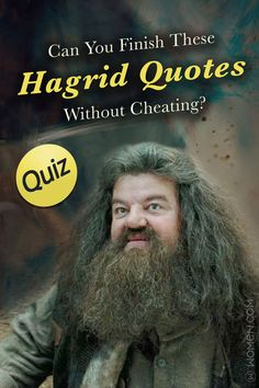 This Harry Potter trivia quiz will test your quotes knowledge by asking you to fill in the blank for each Hagrid quote. Harry Potter Riddles, Harry Potter Quiz, Harry Potter Characters, Harry Potter World, Hagrid Quotes, Rubeus Hagrid, Trivia Quiz, Knowledge Quotes, Personality Quizzes
