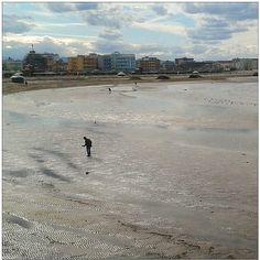 #pesca dei #cannelli alla #barafonda #barafondabeach #rimini #romagna #sea #beach #mare #spiaggia #myrimini #raccontarimini #ig_rimini_ #emiliaromagna_super_pics #igfriends_emiliaromagna_ #igersemiliaromagna #igersrimini #volgoeniliaromagna #vivorimini - #square squareformat iphoneography instagramapp http://buff.ly/1pRc8ow