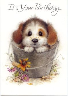 Puppy in bucket Cute Birthday Cards, Vintage Birthday Cards, Birthday Greeting Cards, Birthday Greetings, Vintage Cards, Happy Birthday Puppy, It's Your Birthday, Cartoon Pics, Cute Cartoon