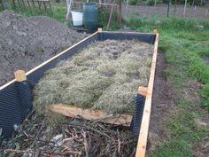 Vegetable Garden Design, Growing Vegetables, Pergola, Outdoor, Garden Ideas, Gardening, Link, Raised Beds, Gardens
