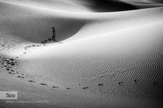 DESERT PHOTOGRAPHER by nut4691. Please Like http://fb.me/go4photos and Follow @go4fotos Thank You. :-)