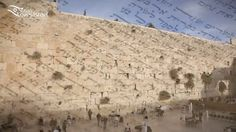 Allow Susan Loves Israel to show you why the holy city of Jerusalem has been a spiritual inspiration to the Jewish people for thousands of years. Join us as we explore it's highlights of the Old and New City. Visit Israel, Underwater Life, Red Sea, New City, Spiritual Inspiration, Historical Sites, Jerusalem, Mount Rushmore, This Is Us