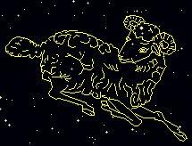 Aries : the ram