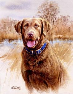 That's My Dog, Too! Chesapeake  Signed Edition-13 x 15