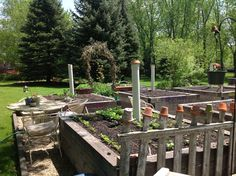 Raised veggie beds