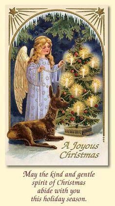 ANGEL DEAR CARDS