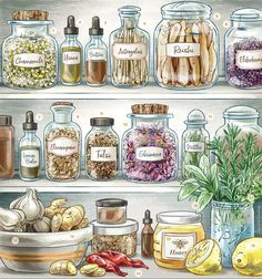 Our Herbal Medicine Cabinet poster is here! Meet some medicinal herbs that can help keep you healthy all year long with our beautiful full-color 11 x 18 print. Hang in your kitchen as home apothecary inspiration! Ships securely in a poster tube. Cold Home Remedies, Natural Health Remedies, Herbal Remedies, Natural Medicine, Herbal Medicine, Holistic Medicine, Medicinal Herbs, Medicine Cabinet, Herbalism