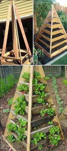 , There is no better material than wood to build a pyramid tower garden. , DIY Ideas to Build a Vertical Garden for Small Space Terrace Garden, Herb Garden, Terraced Vegetable Garden, Garden Grass, Garden Table, Small Space Gardening, Gardening Tips, Organic Gardening, Vegetable Garden