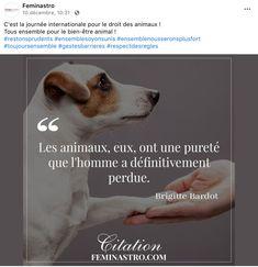 Journée internationale des droits des animaux Feminastro Brigitte Bardot, Corgi, Animals, Animal Welfare, Animal Rights, Corgis, Animales, Animaux, Animal