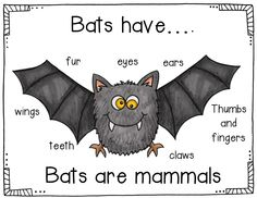 Comparing bats and owls and a fun scary bat poem along with 4 other interactive charts for fall.