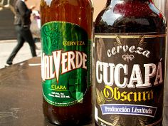 The best places to drink Mexican Craft Beer (yes, in Mexico)