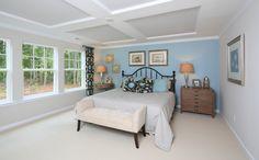 Davinci - Salem Village Preserve - Apex Home for Sale | Standard Pacific Homes