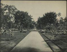 Jardim da Luz Gaensly, Guilherme, 1843-1928 ([1902?])