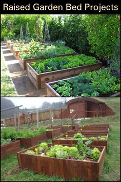 Take inspiration from these various raised garden bed projects and build one of your own today! Take inspiration from these various raised garden bed projects and build one of your own today! Building A Raised Garden, Raised Garden Beds, Raised Beds, Organic Gardening, Gardening Tips, Vegetable Gardening, Urban Gardening, Kitchen Gardening, Fairy Gardening