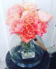Roser fra egen hage🌸Roses from my own garden. #perfecthome#interiør#roser#hage#sommer#interior#roses#garden#summer#loveit🌸