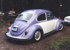 Volkswagen Bug-the owner bought one in Germany for $200 from a friend; sold it 3 yrs later for $300.